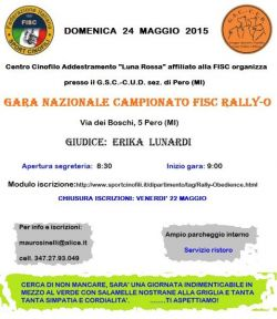 gara-rally-o-24-05-2015-volantino-bis-a3158ac6