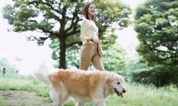 dog-and-girl-38db805c