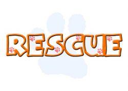 rescue-df66c814