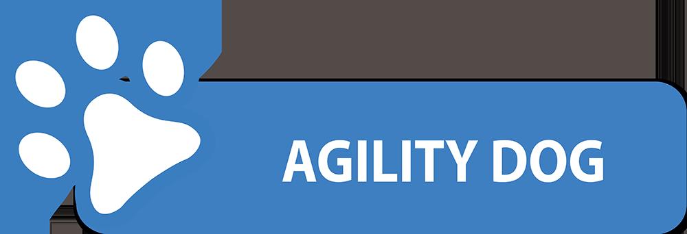 agility-dog