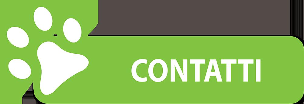 contatti-verde-chiaro