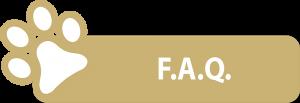 faq-sabbia