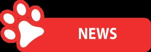 news-rosso